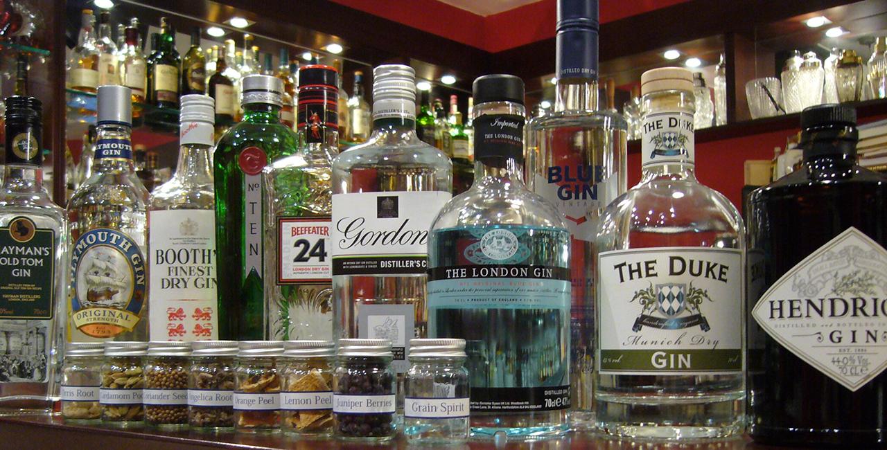 Gin-Tasting Hattersheim