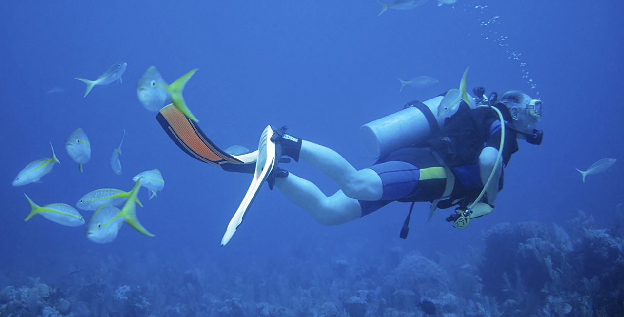 Open Water Diver Kurs Worms