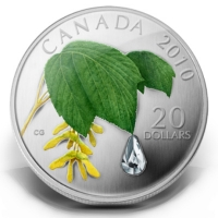 Kanada - 20 CAD Maple Leaf Regentropfen 2010 - 1 Oz Silber
