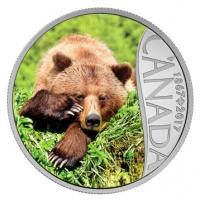 Kanada - 10 CAD 150 Jahre Kanada Grizzly 2017 - Silbermünze